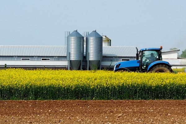 Agroalimentaire : la relation stratèges-acheteurs vue par le groupe Avril