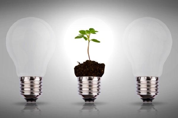 Que font réellement les cabinets de conseil en stratégie sur la thématique du développement durable ?